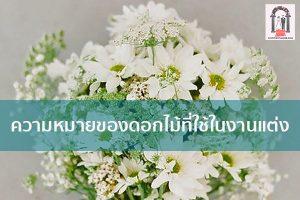 ความหมายของดอกไม้ที่ใช้ในงานแต่ง จัดงานแต่งงาน | ชุดแต่งงาน | ธีมงานแต่ง การ์ดแต่งงาน