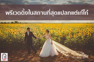 พรีเวดดิ้งในสถานที่สุดแปลกแต่เก๋ไก๋ จัดงานแต่งงาน   ชุดแต่งงาน   ธีมงานแต่ง การ์ดแต่งงาน
